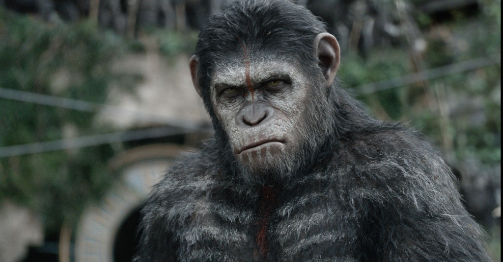 la-planete-des-singes-l-affrontement-dawn-of-the-planet-of-the-apes