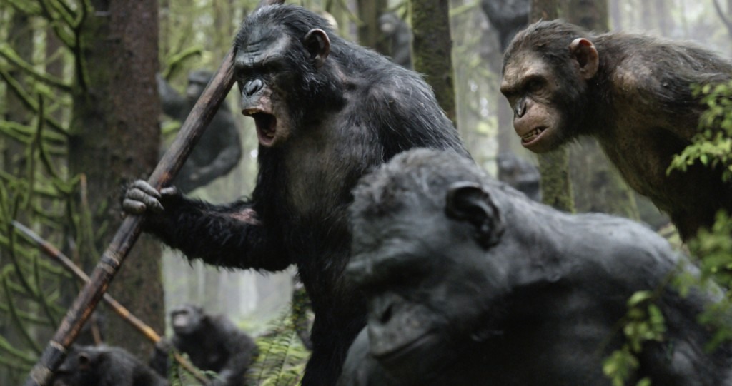 la-planete-des-singes-l-affrontement-photo